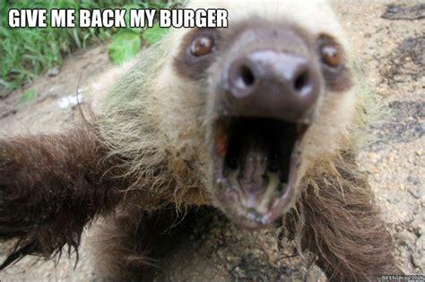 Angry Sloth Meme - angry sloth memes quickmeme