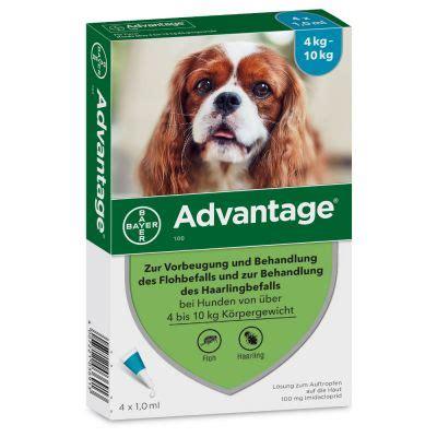 advantage  fuer hunde guenstig kaufen zooplus