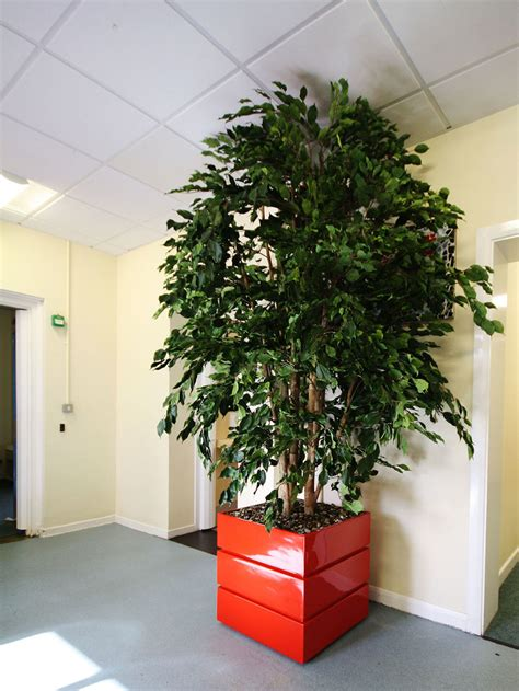large ficus tree plantart large green artificial ficus trees large 3651