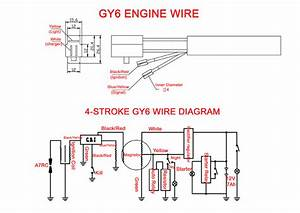 Wiring Diagram For Gy6 50cc Scooter Taotao Atm50 50cc