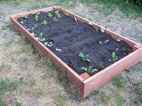 building a garden box diy planting your garden box popsugar home