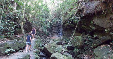rio de janeiro waterfalls circuit  tijuca rainforest rio de janeiro brazil getyourguide