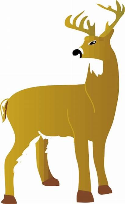 Deer Dear Tailed Vector Clip Clipart Silhouette