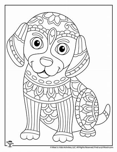 Coloring Animal Adults Dog Adult Animals Teens