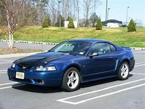 Gordonfan24 2000 Ford Mustang Specs, Photos, Modification Info at CarDomain
