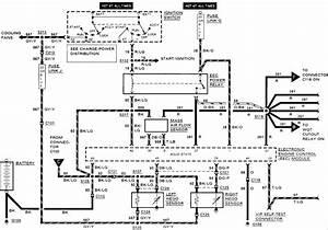 Oxygen Sensor Wires