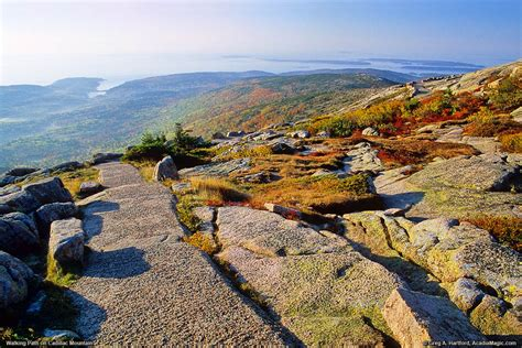 cadillac mountain summit acadia national park