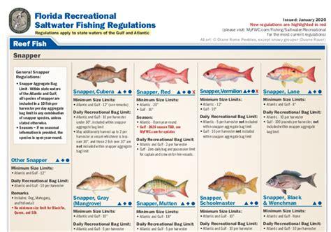 florida saltwater regulations fishing magazine coastal angler reg