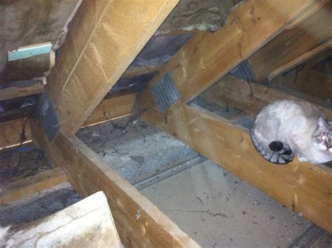 beton allege plancher bois changement planch 233 bois en planch 233 b 233 ton all 233 g 233 8