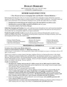 sles of resumes channel sales resume exle