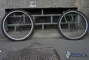 Fahrrad 4 Räder : r der ~ Kayakingforconservation.com Haus und Dekorationen
