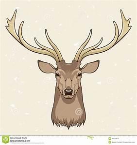 17 Vector Deer Skull Images - Deer Skull Antler Clip Art ...