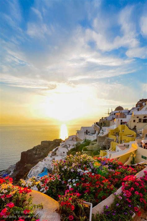 Sunset Flowers In Oia Santorini Places Id Like To Go