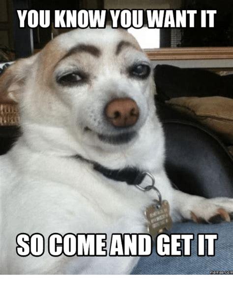 Come And Get It Meme - 25 best memes about get it meme get it memes