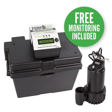 Wayne 13 Hp  12volt Battery Backup Sump Pump System