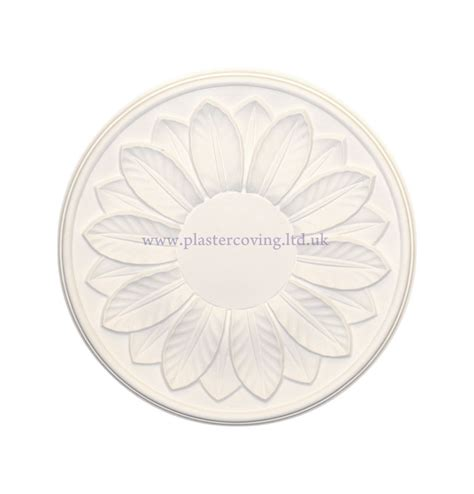 Small Plaster Ceiling Rose by Small Leaf Plaster Ceiling Rose 305mm