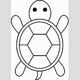 Hawaiian Sea Turtle Clipart   5178 x 7226 png 650kB