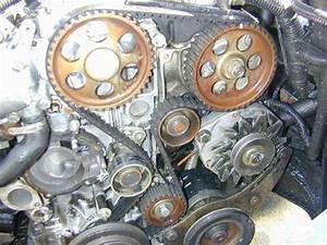 Changement Courroie De Distribution Picasso Diesel : changement distri et pompe a eau moteur j8s ~ Gottalentnigeria.com Avis de Voitures