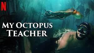 U0026, 39, My, Octopus, Teacher, U0026, 39, Wins, Oscar, For, Best, Documentary, Feature