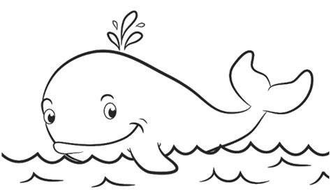 aneka mewarnai gambar hewan ikan paus ikan paus gambar