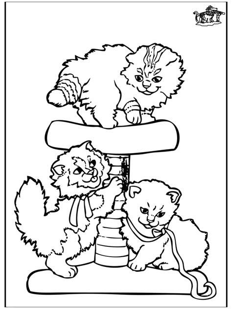 kleine katzen malvorlagen katzenartigen