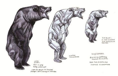 muscle bear ideas  pinterest muscle guys hot