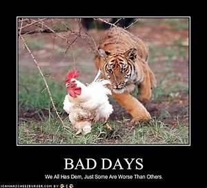 Having A Bad Day Funny Quotes. QuotesGram