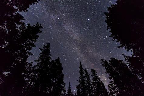 Milky Way Amid The Trees The Amazing Sky