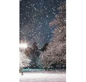 Falling Snow Trees Night Android Wallpaper Free Download