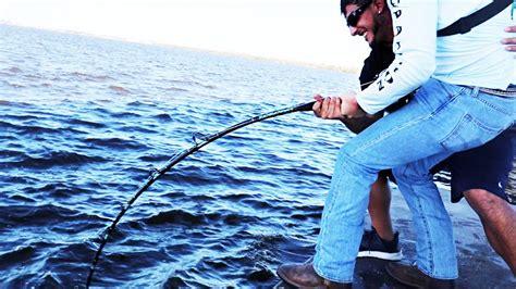 grouper goliath fishing rod giant pound