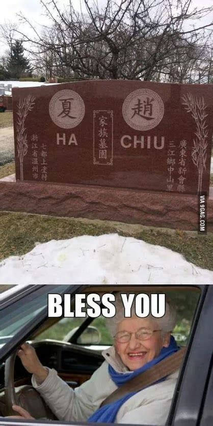 500 x 301 jpeg 32 кб. God bless you | Funny facts, Jokes quotes, Funny pictures