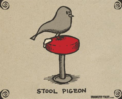 What Does Stool Pigeon - sip lean and fall asleep in a running car with ecstacy and