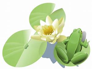 OnlineLabels Clip Art - Frog On A Lily Pad