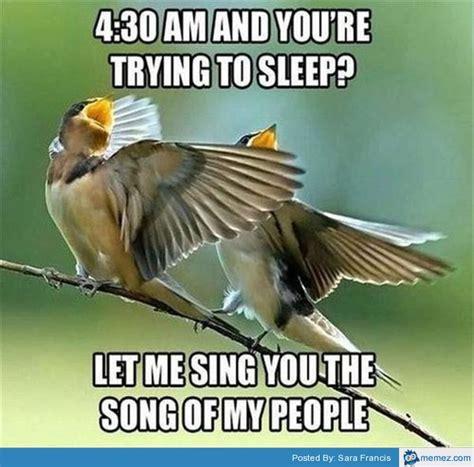 Trying To Sleep Meme - trying to sleep memes com