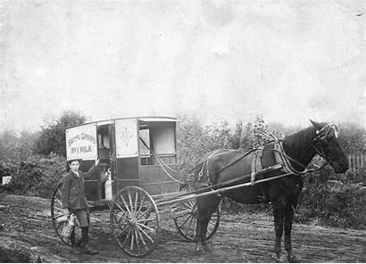Horse Milk Drawn Wagon Wagons Dairy Pleasant