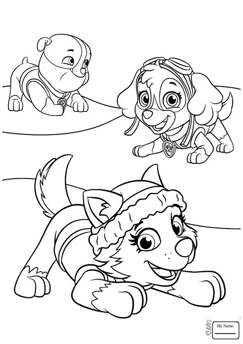 skye paw patrol coloring pages  print  coloring books