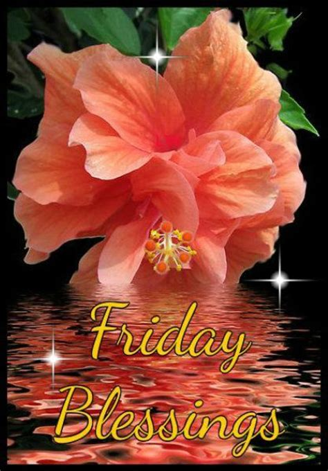 friday blessings pictures   images  facebook