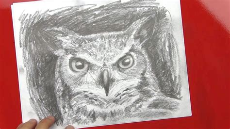 Speed Drawing Of An Owl Art For Kids Hub