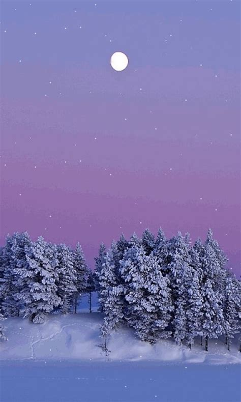 Winter Snow Animated Wallpaper - animated 480x800 171 winter 187 cell phone