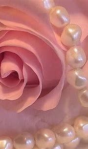 Pearls and pink - Photography & Abstract Background ...