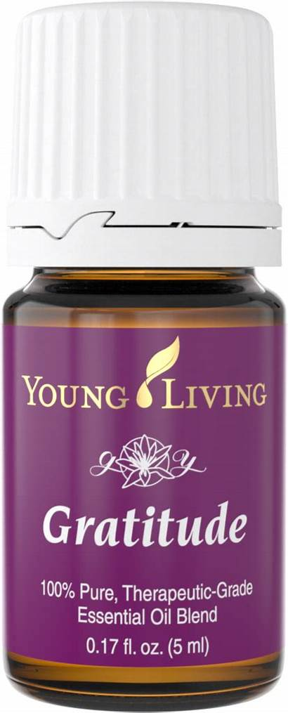 Young Living Oil Gratitude Essential Release Thieves
