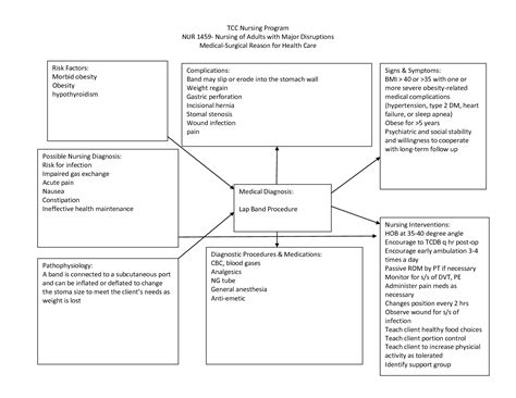 Nursing Diagnosis Concept Maps Scope Of Work Template