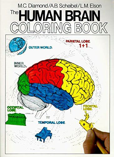 awesome anatomy coloring books