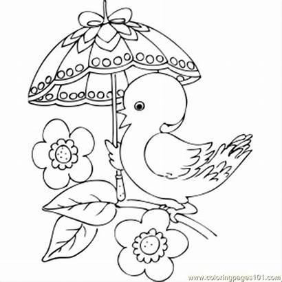 Umbrella Fancy Chick Coloring Pages Bird Printable