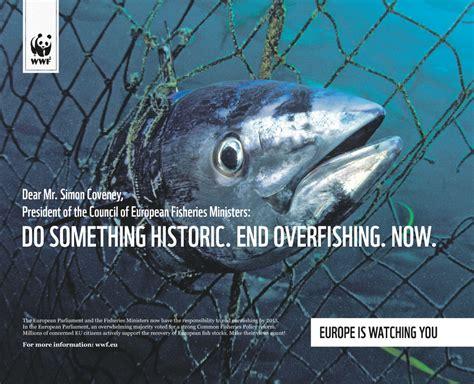 historic  overfishing  wwf