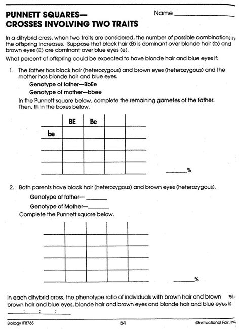 Good Dihybrid Punnett Square Worksheet Goodsnyccom