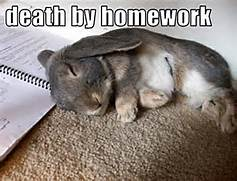 Animal Humor images bu...