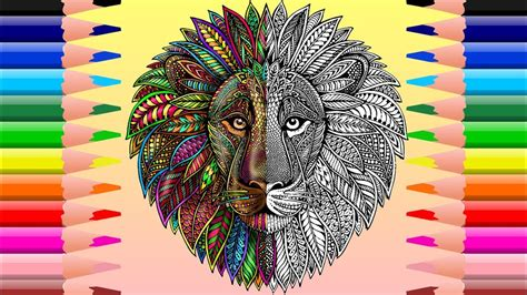 leon mandala  colorear mandala lion coloring youtube