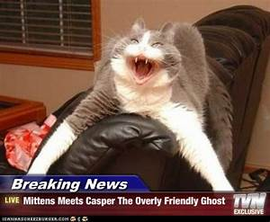 Breaking News Mittens Meets Casper The Overly Friendly