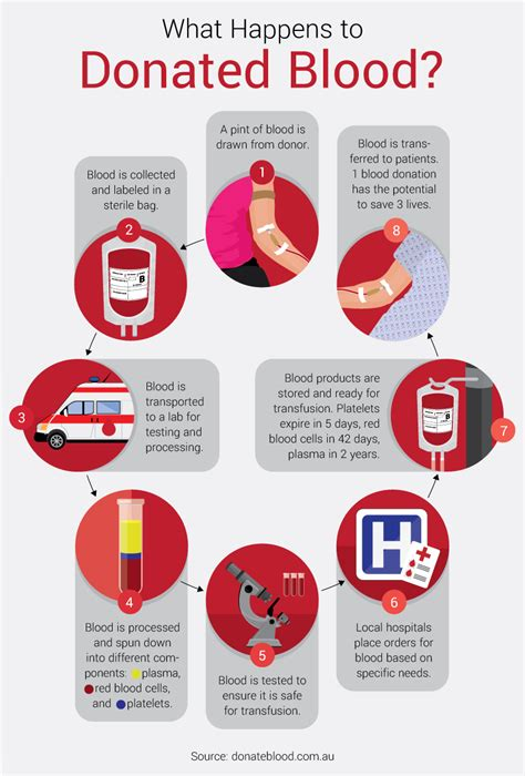 10 surprising facts about donating blood from most needed blood type to time of year with most